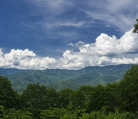 Rolling Appalachian Hills In North Carolina